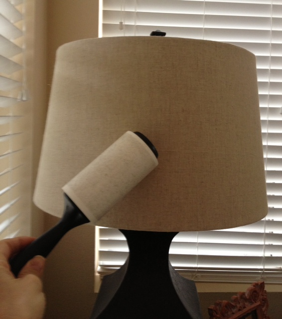 How To Dust A Lampshade