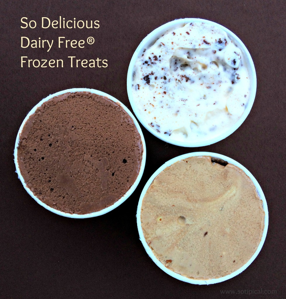 so delicious dairy free frozen treats