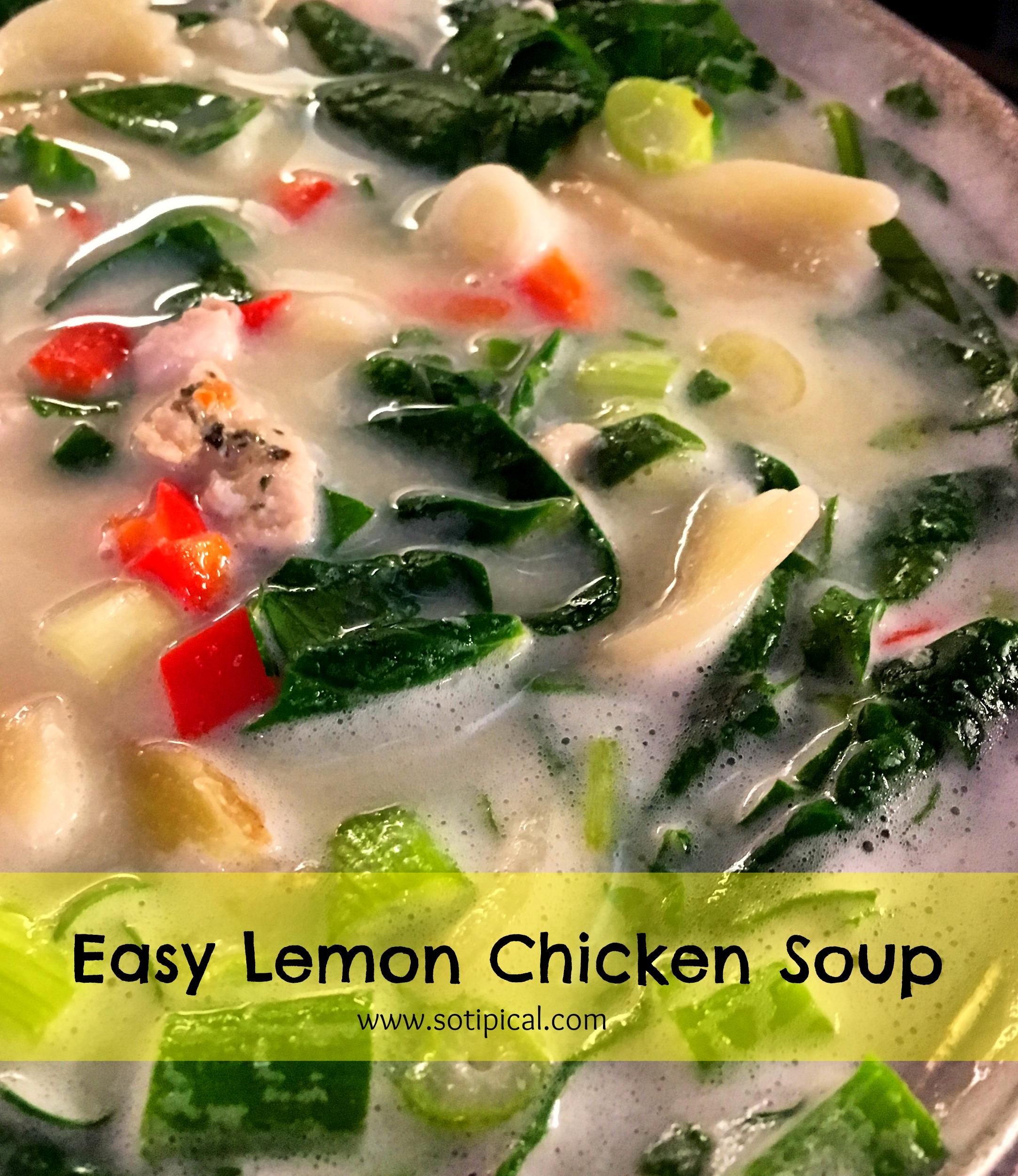 easy lemon chicken soup 2