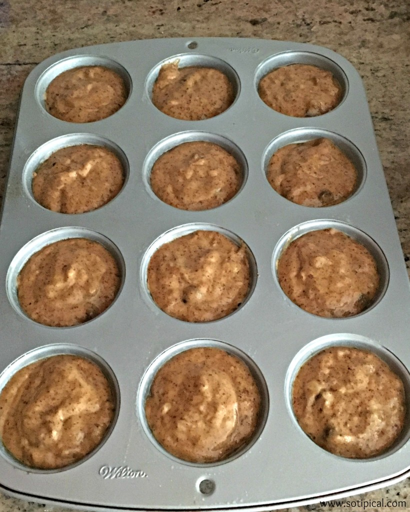 Gluten Free Banana Chocolate Chip Muffins6