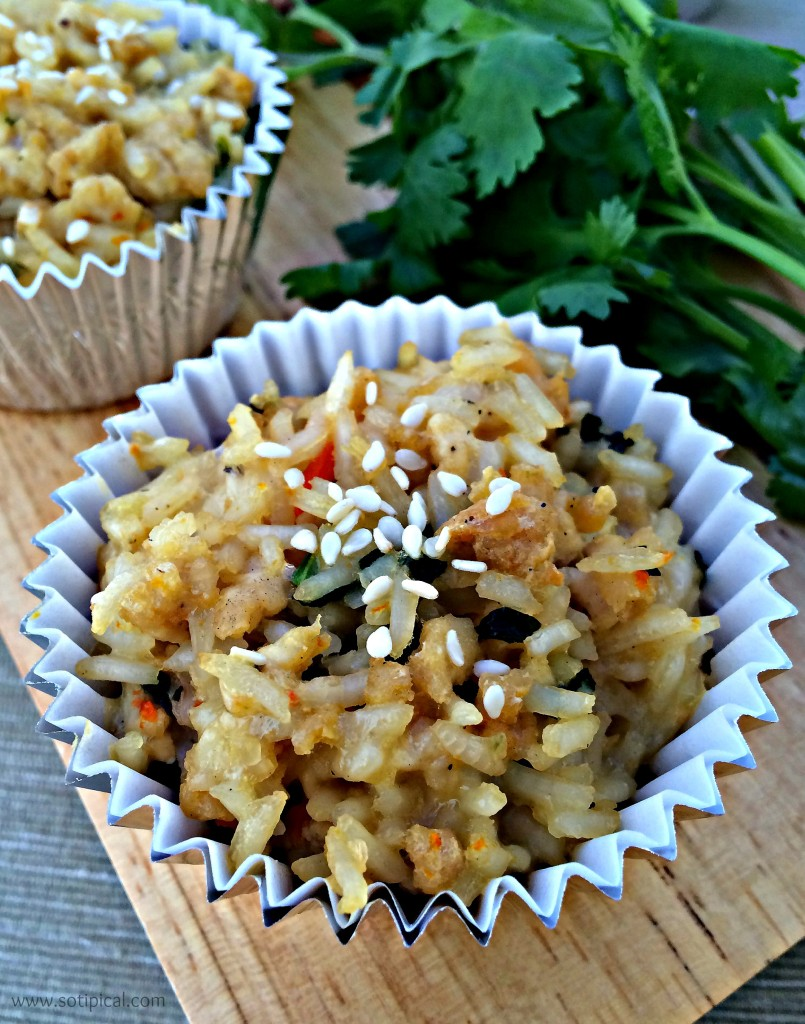 chicken fried rice cups closeup