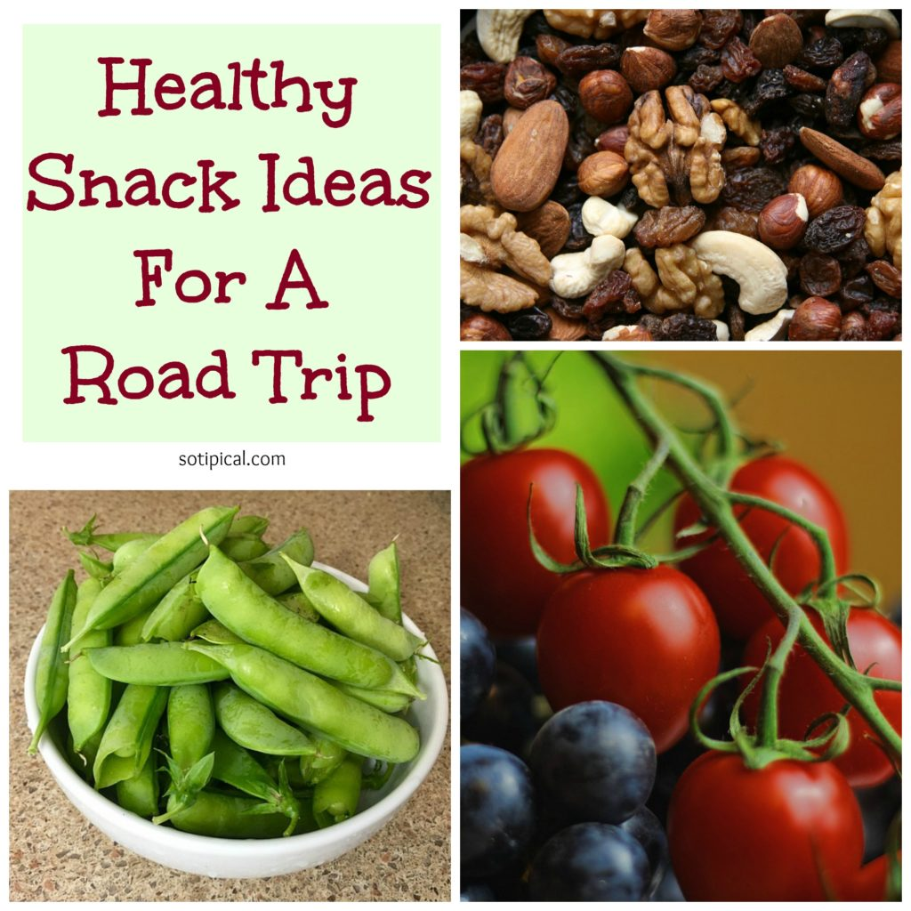 healthy snack ideas for road trip